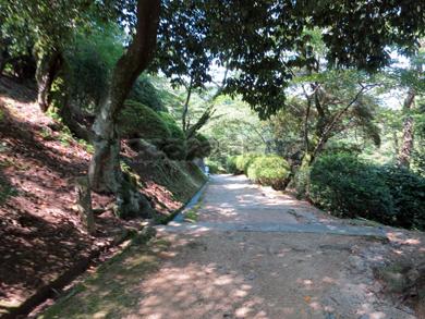 kagawa011-09-2013.jpg