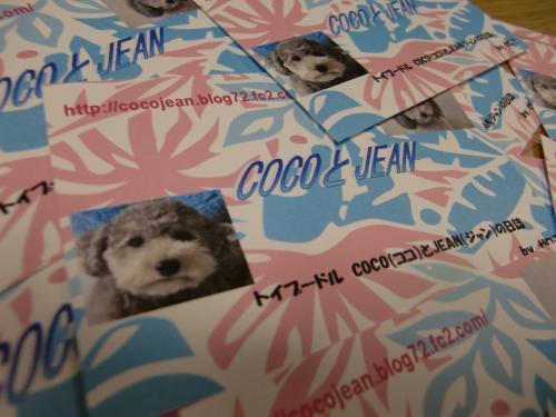 020_convert_20100119001642.jpg