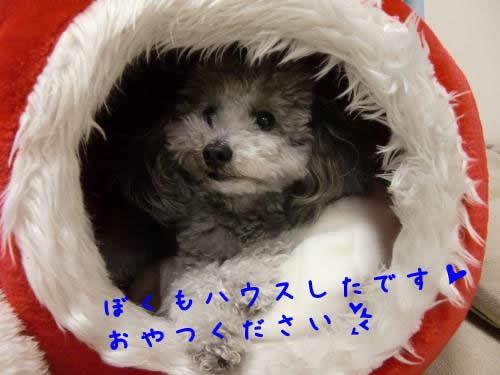 001_convert_20100218004455 1
