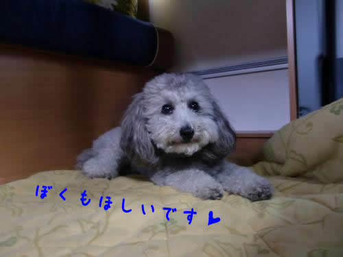 譯應コ募ク・067_convert_20100414025035 1