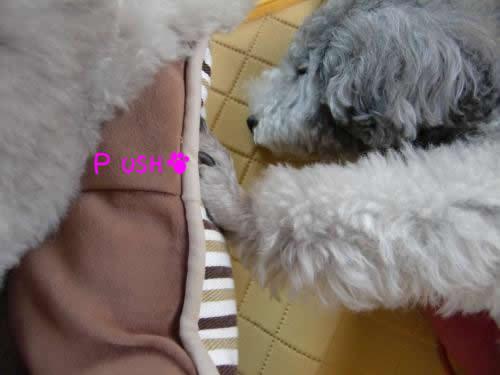 068_convert_20101009090521 1