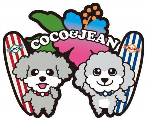 coco_convert_20101027002818 1