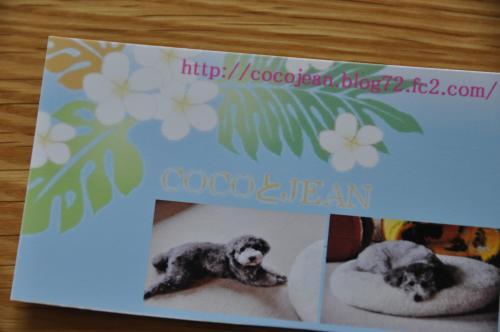 DSC_0485_convert_20100627232401.jpg