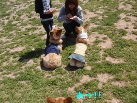 ⑱尻ハンター現る!!