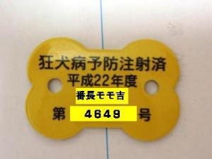 P4232200.jpg