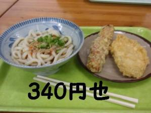 P5032278.jpg