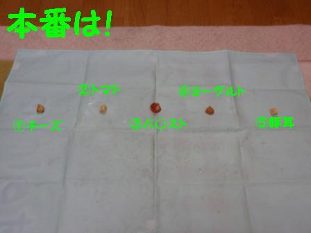 P5210117.jpg