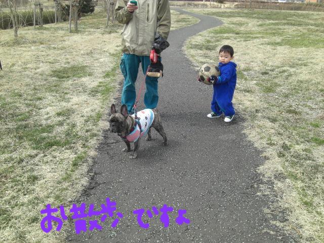 CIMG3960blog.jpg