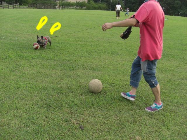 CIMG4552blog.jpg