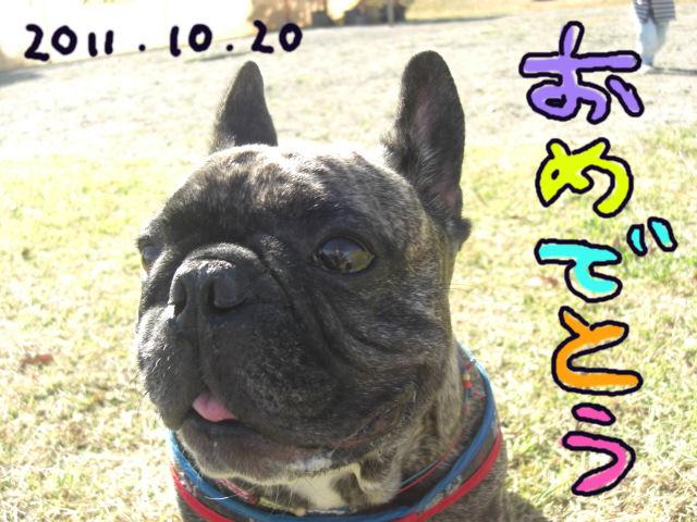 CIMG4783blog.jpg