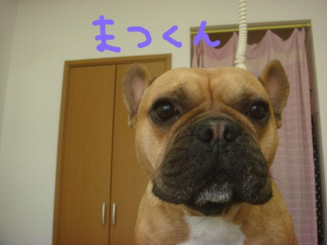 DSC02389blog.jpg