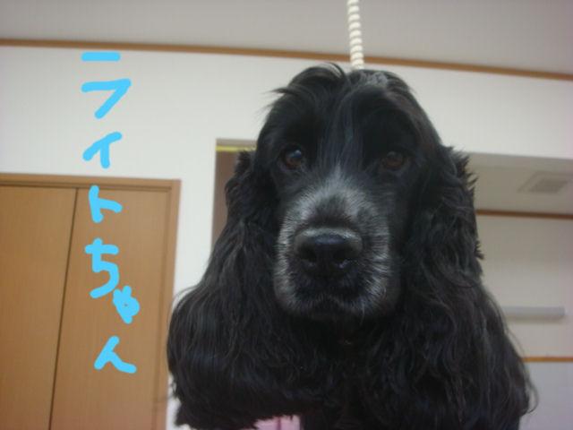 DSC02396blog.jpg
