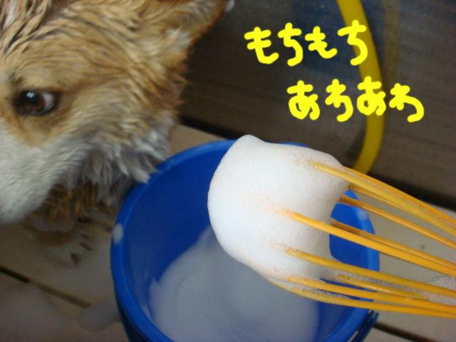 DSC02606blog.jpg