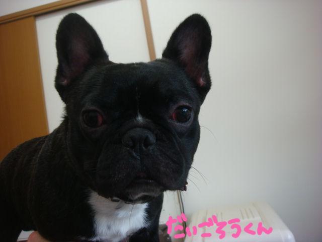DSC02814blog.jpg