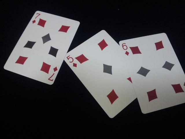 20130205 (103)