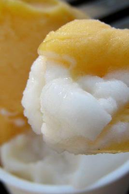 ジェラテリア・イル・ブリガンテ--柿/洋梨。