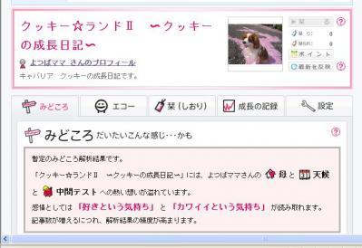 これ、何だ~?!
