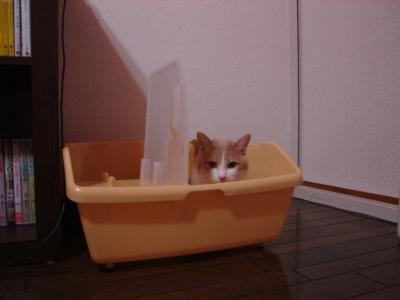 繝。繝ュ繝シ・狙convert_20110621201109
