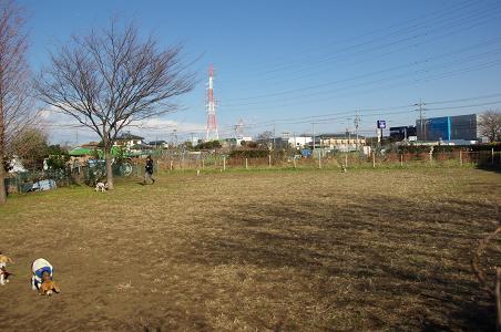 091231-10hirukawa view