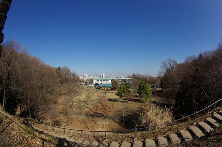 100130-03oyama dairi park