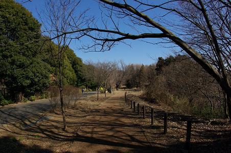 100130-07oyama walk