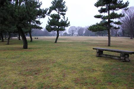 100211-09sagamihara park view
