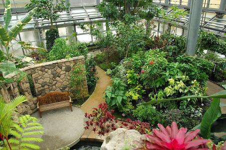 100227-06in kanagawa green house