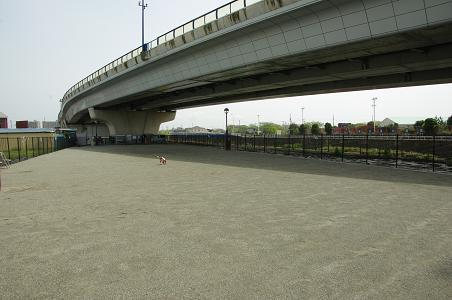 100429-01shounan dog park view