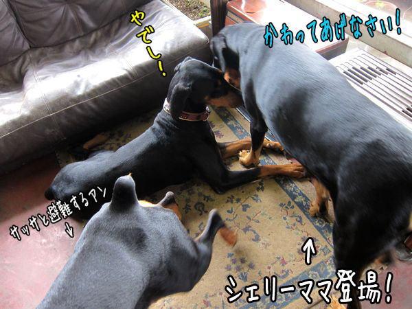 basyowomeguri4.jpg
