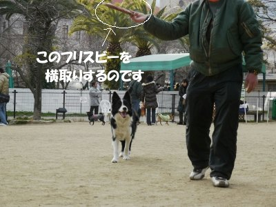 s-2010.01.10 090