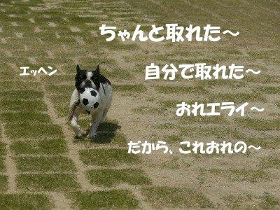 s-2010.05.01 084