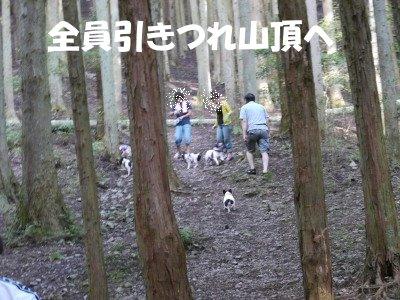 川遊び (8)