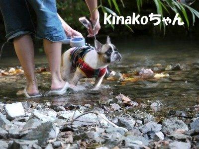 川遊び (4)