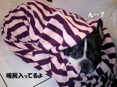 ねぶくろ (2)