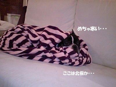 ねぶくろ (1)