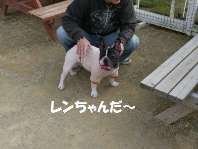 レンちゃん (2)