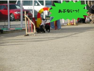 ワンふれんず (3)