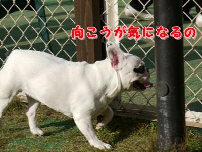 ともだち (7)
