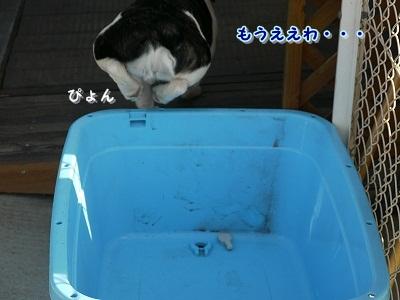 かぶりもの (5)