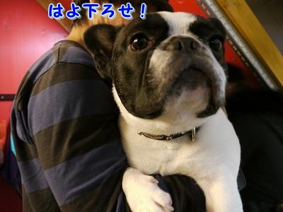 シャンプー中 (2)