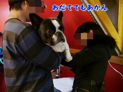 シャンプー中 (4)