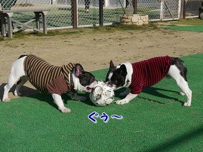 サッカーボールが (1)