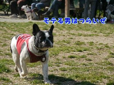 モテる男女 (7)