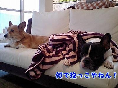ソファの上 (2)