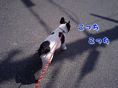 あそぼ~ (2)