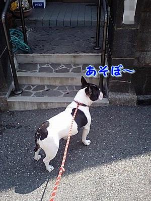 あそぼ~ (1)