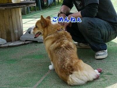 解禁日 (6)