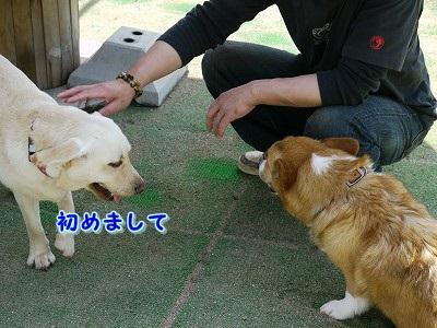 解禁日 (2)