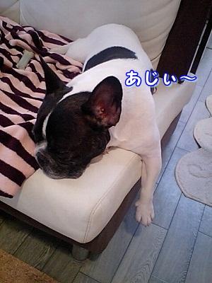 あじい (1)