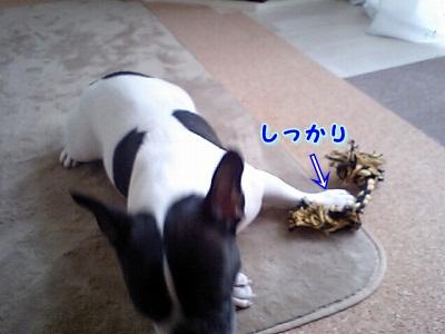 捨てましょ (2)